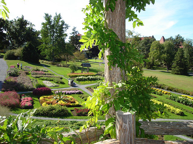 garden3 (183k image)