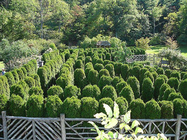 maze (251k image)