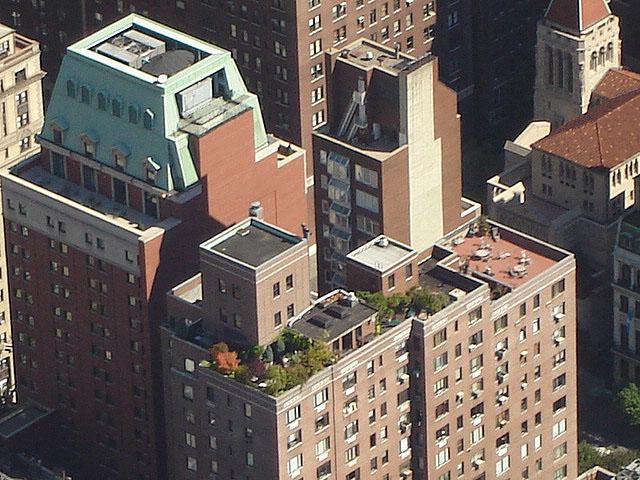 roofgarden (141k image)